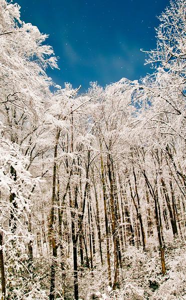 Seasons WV_Winter-Preston