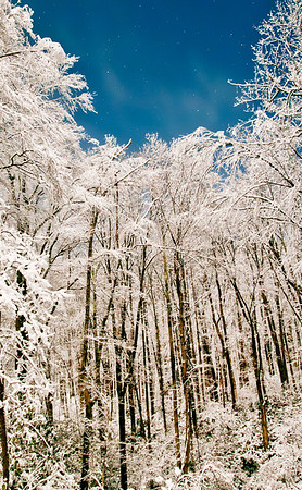 Seasons WV_Winter-Preston