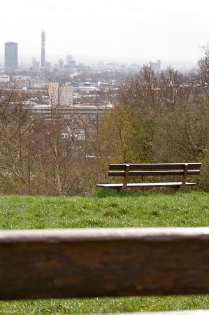 Benches in Hampstead Heath