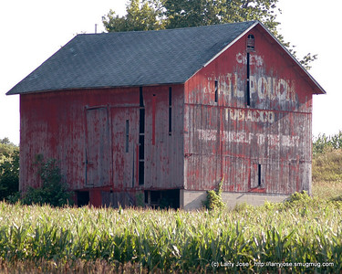 Barns, August, 2007 - This barn is located between Hillsdale and Jonesville on M-99.