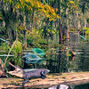Lake Martin, Breaux Bridge, Louisiana