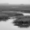 Folly Marsh fog BW I