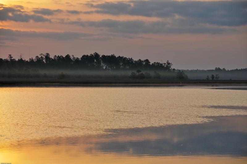 Sunrise on Beresford Creek II