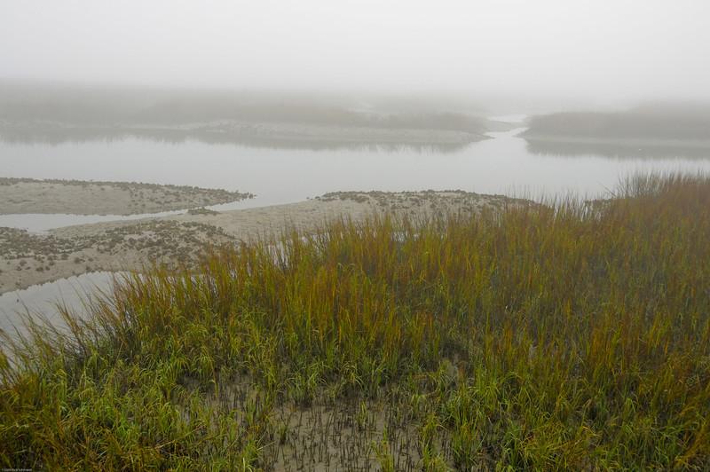 Folly marsh early morning fog II