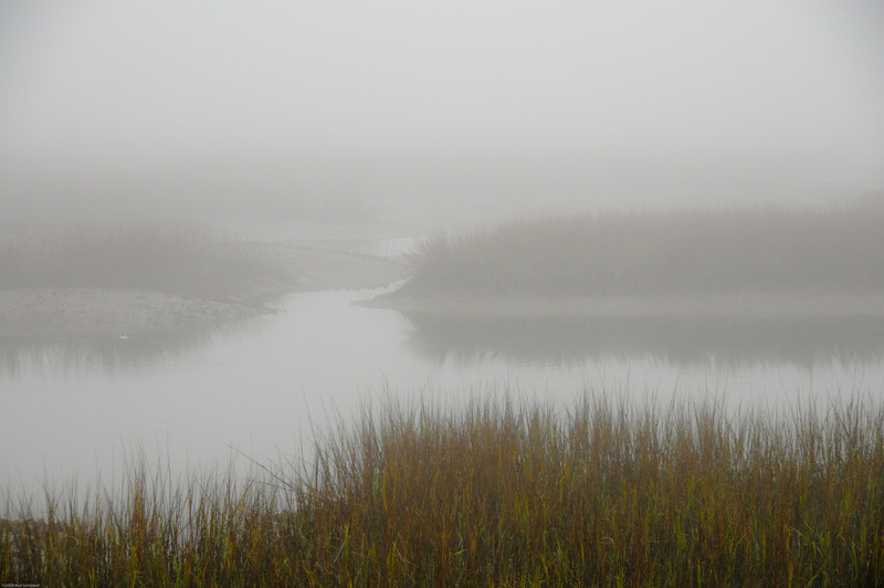 Folly marsh early morning fog I