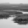 Folly marsh in morning mist BW.