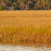 Hobcaw marsh at sunset I