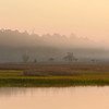 Beresford Creek Sunrise I