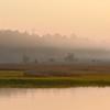 Beresford Creek Sunrise I