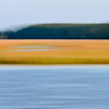 Beresford Creek marsh blur II