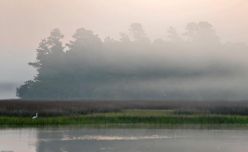 Beresford Creek Sunrise IV