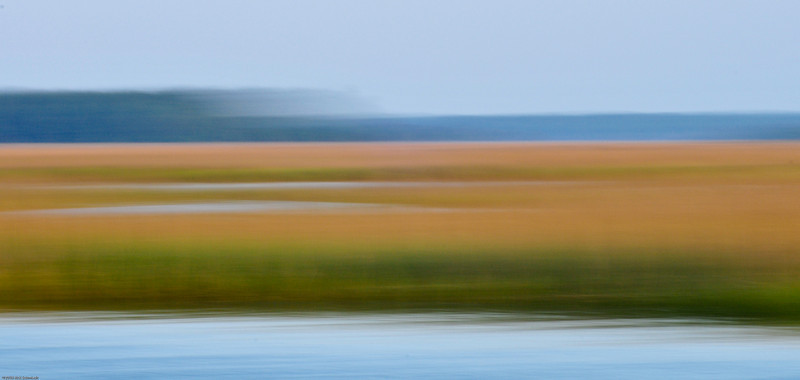 Beresford Creek marsh blur IV