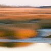 Folly marsh blur