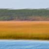 Beresford Creek marsh blur I