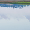 Beresford Creek Cloud Reflections