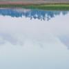 Beresford Creek Cloud Reflections