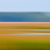 Beresford Creek marsh blur VI