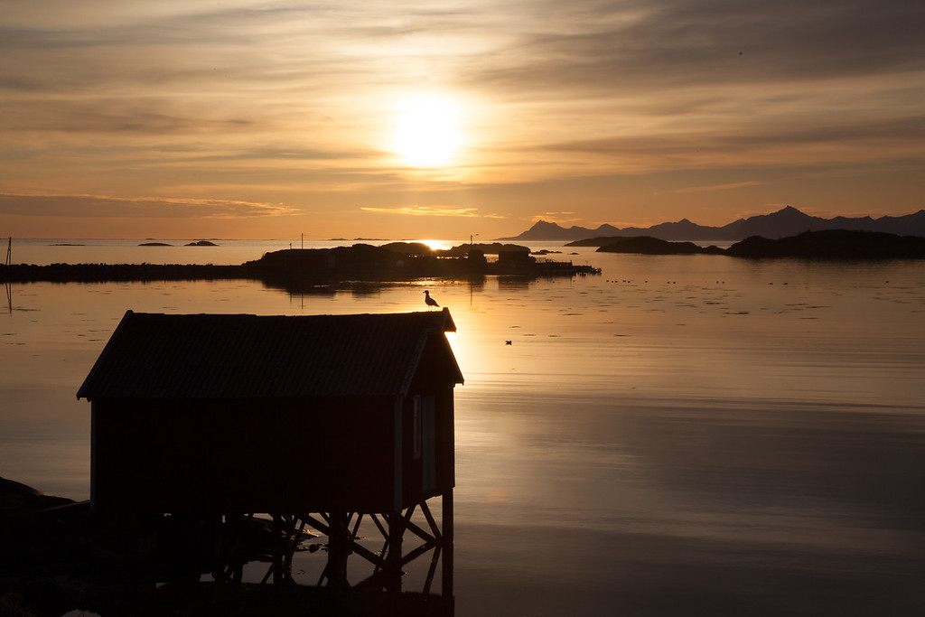 Krøttøy in the midnight sun