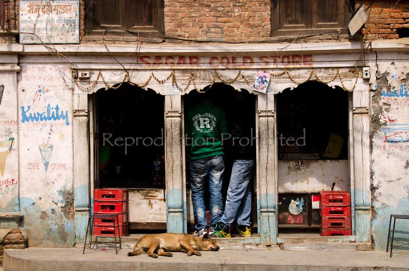 Cold Store Patan, Kathmandu 2012