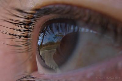 Landscape seen by the Eye