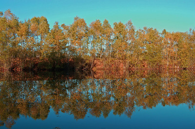 Autumn reflection at Swanhome Lakes Nature Reserve, Lincoln, UK