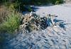 Washed up on Crowninshield Island
