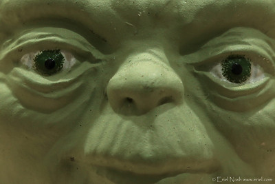 Yoda-20120925-02-crop