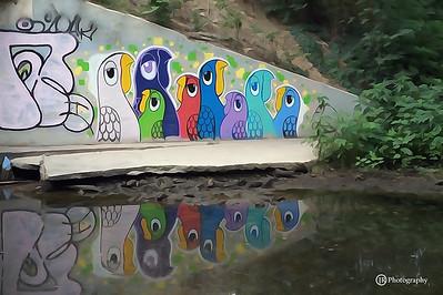 Street Art,  Austin Texas