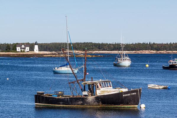 Schoodic Harbor