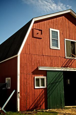 Maine Farm..Horses! 10/13