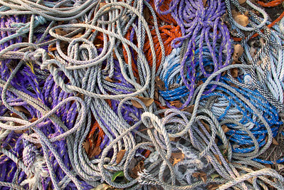 Lobster Dock Rope Abstract