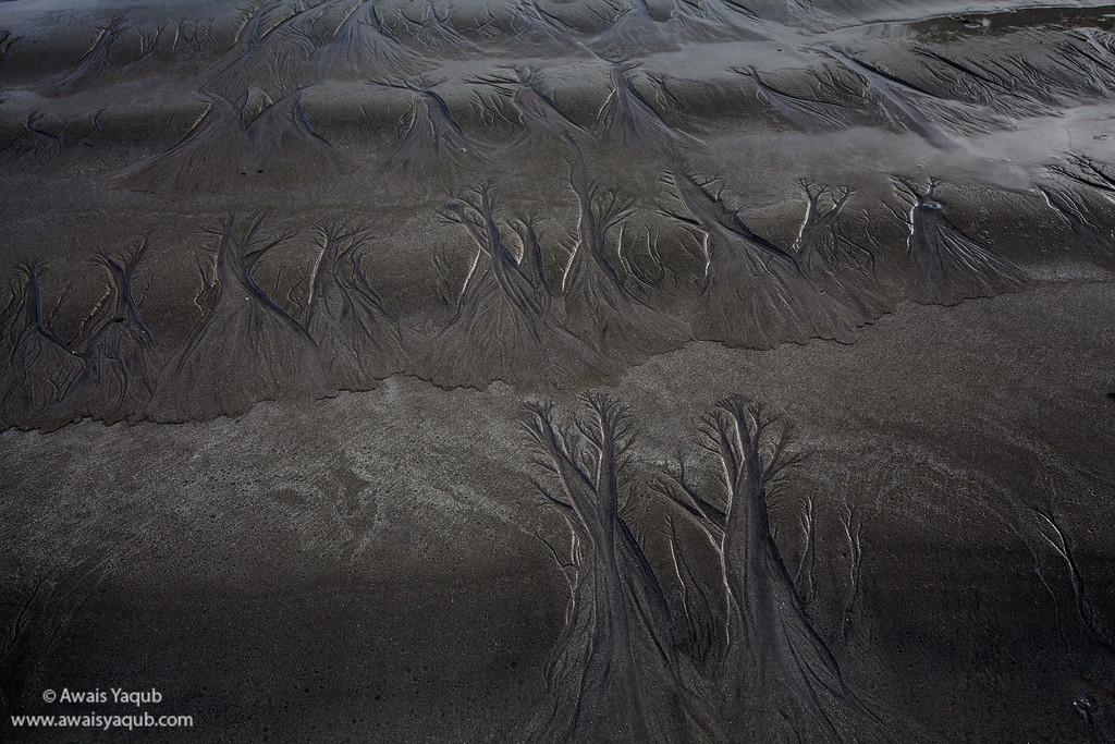 Water waves leave beautiful tree like texture on sand. Langkawi Malaysia