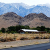 Near Highway 395 Near Mt Whitney