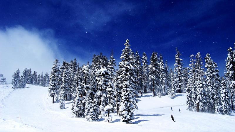 Fresh Snow 2