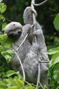 Just Hangin' Around