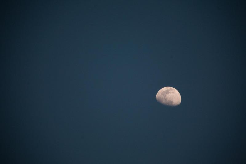 Cayman Moon