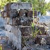 Mandeville_Cemetery-6