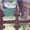 Mandeville_Cemetery-15