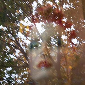 20151025_MG_1039Stephanie Roberts-ObsessiveHobbyist com