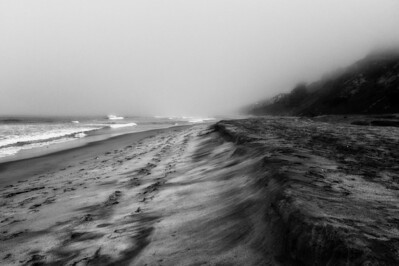 Foggy morning on the sand.