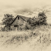 Constance Sanders, The Barn on the Hill, framed 8x10 print on lustre paper, 11x14, $90, consanphotos@fuse.net, 859 - 391 - 4676