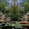 Dennis Capps, Merge XV: WATERLILIES, digital print on aluminum, 20x16, $210, dWCdART@cinci.rr.com, 247-0778