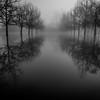Flooded Symmetry