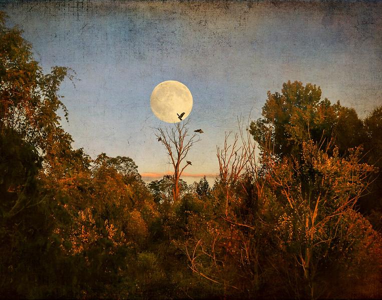 Bekkie Harper, Moonrise at Sunset, color print, finished size 16x20, $225, shutterbugbekkie@yahoo.com, 740-464-8028