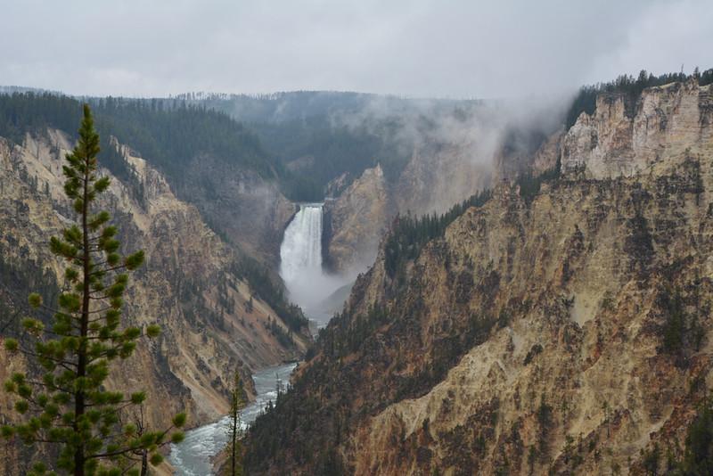 Amy Brenner, Yellowstone Grand Canyon, photo, 10x12, $50, poolsharkfl@yahoo.com, 513-325-6336