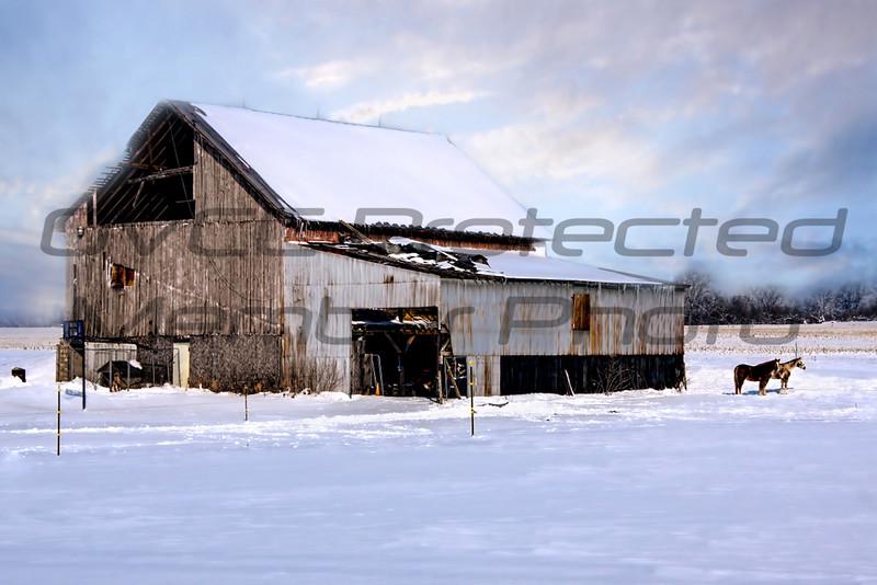 "Joe Chunko, ""Winter Solace"", Photo printed on Rice Paper, 20 x 24, $150.00, jrchunko@gmail.com, 513-702-6976"