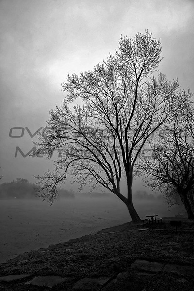 Rich_Sears, Solitude, Photograph, 16x20, $120, rich@richsearsphotography.com, (513)324-5643