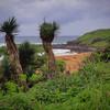 Vickie Villavicencio, Kauai Coast, 8x10 framed to 11x14, $65<br /> vickievilla@cinci.rr.com  513 379-3404