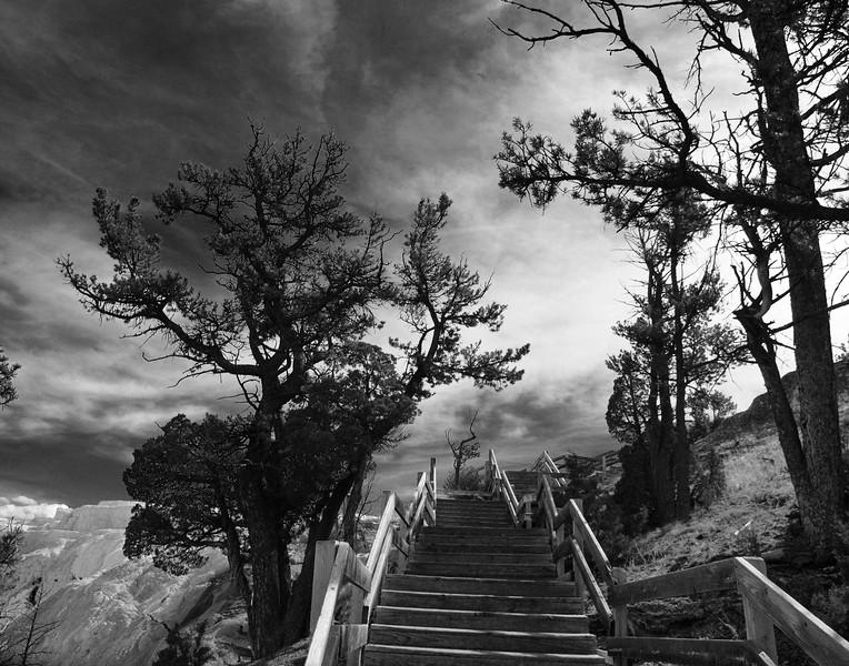 "Vickie Villavicencio, ""Stairs to the Skies""    11x14 print framed to 16x20,  $90,  513 379-3404,   vickievilla@cinci.rr.com"