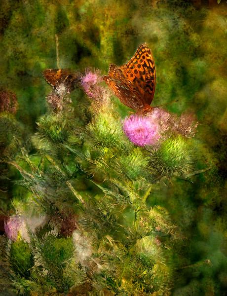 Dennis Capps, Oil Impression XXX: GREAT SPANGLED FRITILLA, digital print on canvas, $275, dWCdART@cinci.rr.com, 247-0778